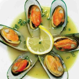 GINGER MUSSEL